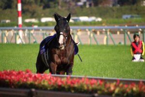 livejupiter 1629815741 6502 300x200 - 【画像】テーオーコンドルとローマンネイチャーより面白い馬の画像ってあるの?