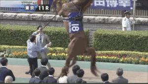 livejupiter 1629815741 7801 300x171 - 【画像】テーオーコンドルとローマンネイチャーより面白い馬の画像ってあるの?