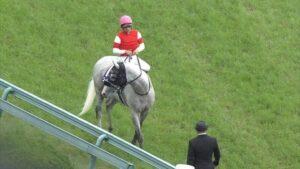 livejupiter 1629815741 8001 300x169 - 【画像】テーオーコンドルとローマンネイチャーより面白い馬の画像ってあるの?