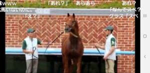 livejupiter 1629815741 9202 300x146 - 【画像】テーオーコンドルとローマンネイチャーより面白い馬の画像ってあるの?
