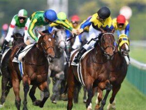 livejupiter 1629947427 5101 300x225 - 【競馬】マカヒキ(牡8)、 京都大賞典へ