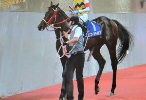 livejupiter 1630074012 3501 300x206 - 【競馬】今年の秋競馬、見どころ満載
