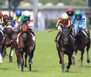 livejupiter 1633873006 12601 300x253 - 【競馬】2021年のベスト画像、京都大賞典のマカヒキに決まる