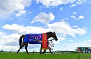 livejupiter 1633873006 50601 300x195 - 【競馬】2021年のベスト画像、京都大賞典のマカヒキに決まる