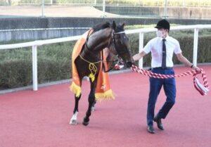 livejupiter 1633873006 5304 300x209 - 【競馬】2021年のベスト画像、京都大賞典のマカヒキに決まる