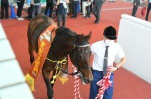 livejupiter 1633873006 5305 300x197 - 【競馬】2021年のベスト画像、京都大賞典のマカヒキに決まる