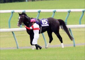 livejupiter 1633873006 58301 300x210 - 【競馬】2021年のベスト画像、京都大賞典のマカヒキに決まる