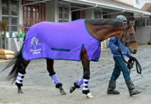 livejupiter 1633873006 64201 300x207 - 【競馬】2021年のベスト画像、京都大賞典のマカヒキに決まる