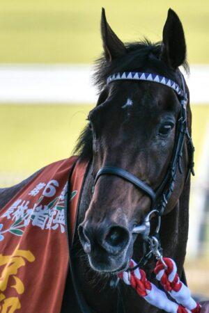 livejupiter 1633873006 74001 300x450 - 【競馬】2021年のベスト画像、京都大賞典のマカヒキに決まる